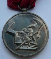 NDR Záslužná medaile bojov., Ag