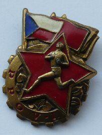 Armádní odznak zdatnosti - 1.tř.