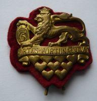 Dánsko odznak králov.gardy