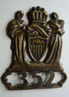 """USA Jutiční stráž """"352"""" 30 léta našívací"""