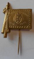 ČSR 1 čs. Pěší pluk na Slovensku 1918-19