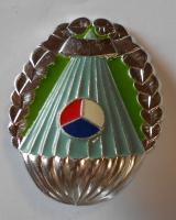 ČSSR PARA odznak