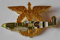 ČSR Pilotní odznak pro veterány