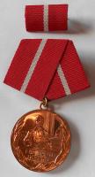 NDR Für Treu Dienste, bronzový stupeň