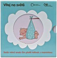 Ročníková sada oběžných mincí ČR (2013-narození dítěte), stavy 0/0
