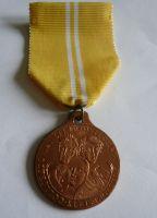 pamětní medaile na bitvu u Kulmu, ČR
