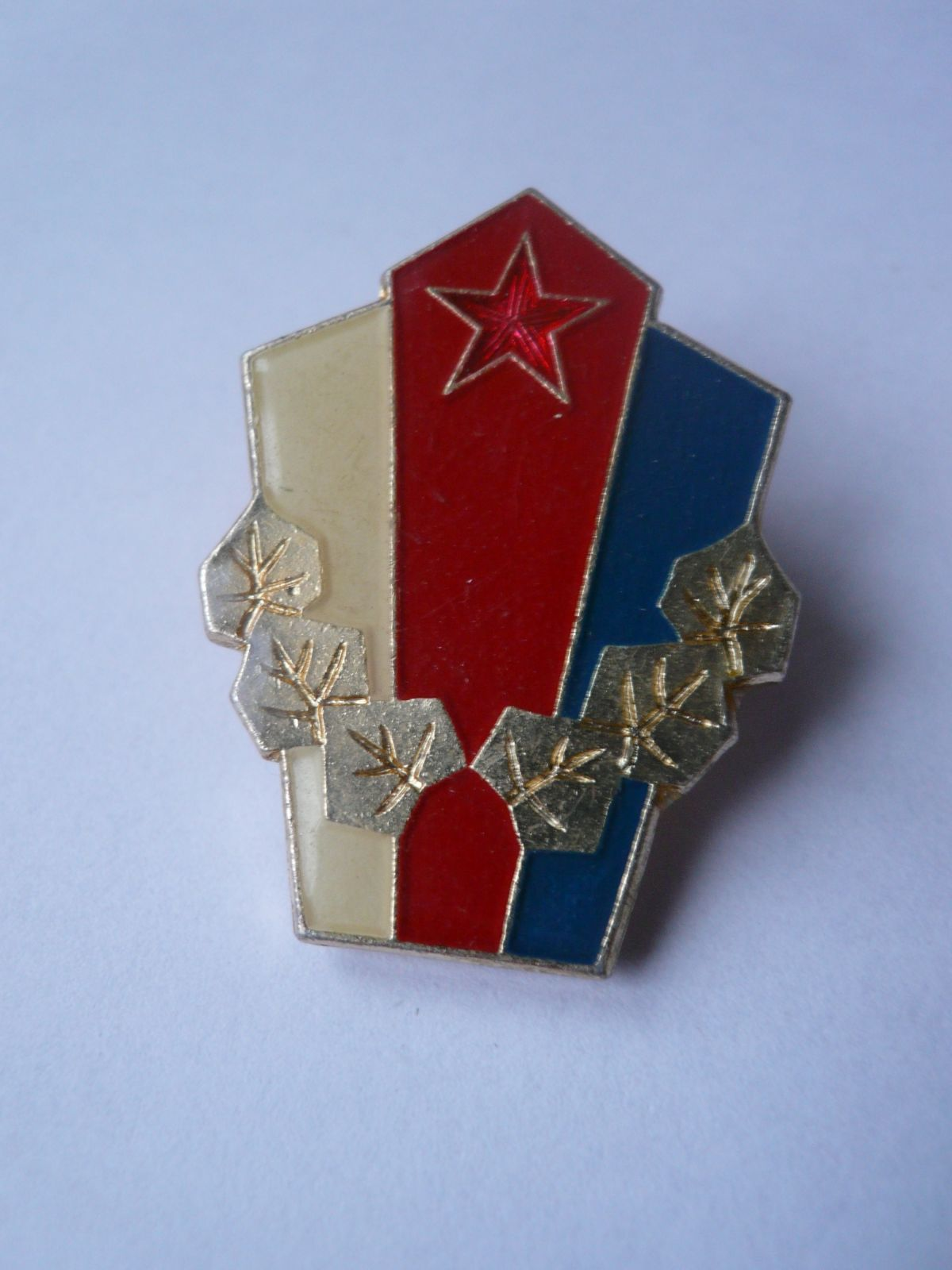 Vzorná vojen.jednotka, ČSSR