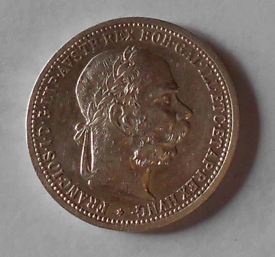 1 Koruna 1894 stav