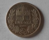 Uhry 1 Koruna 1895 KB