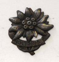 Rakousko Horská protěž, našívací odznak