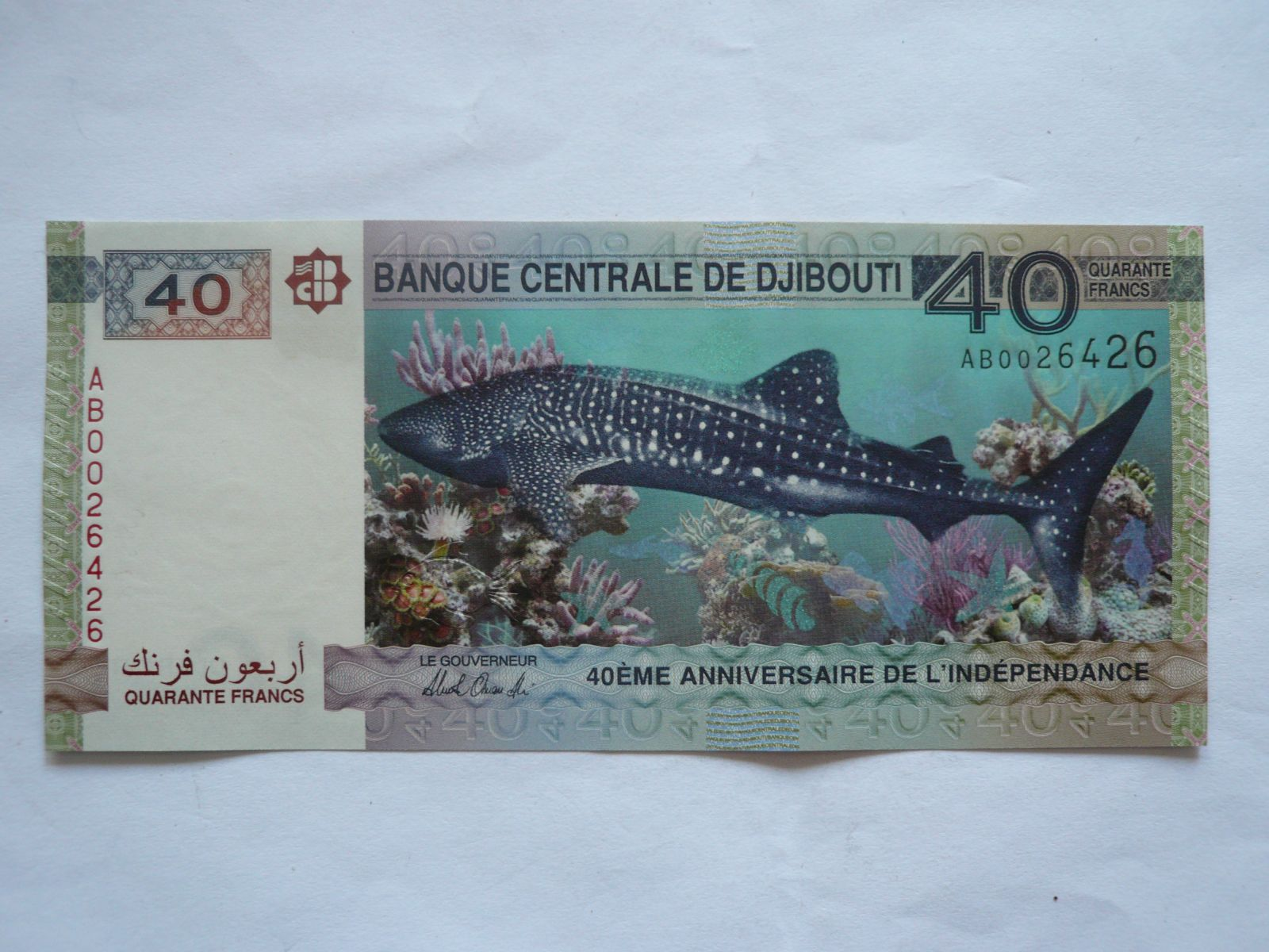 40 Frank, žralok, Džibutti